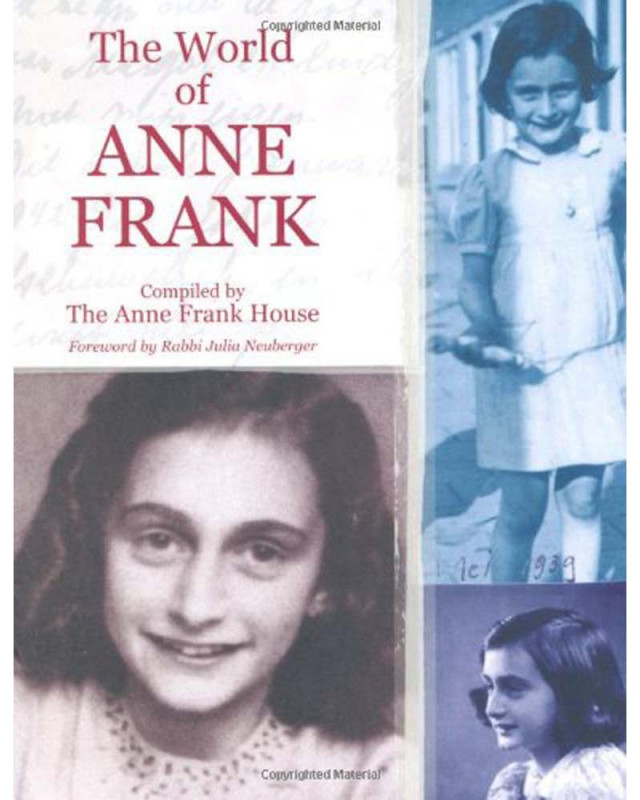 an analysis of the story of anne frank Sixty-three years after the death of anne frank, this drama presents the story of her years in hiding in five half-hour episodes, which focus in depth on the events within the annex above her father's factory.