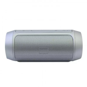 Silver Charge Mini 2+ Portable Wireless Speaker